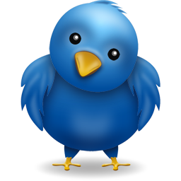 Twitter Booster Services