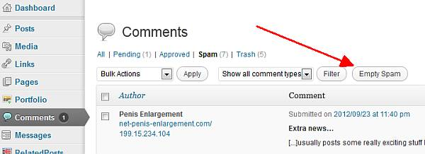 Get Rid Of Comment Spam In WordPress